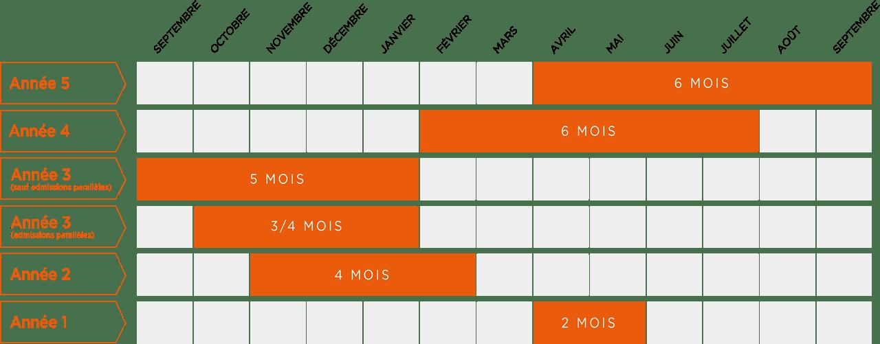 Schéma périodes de stage