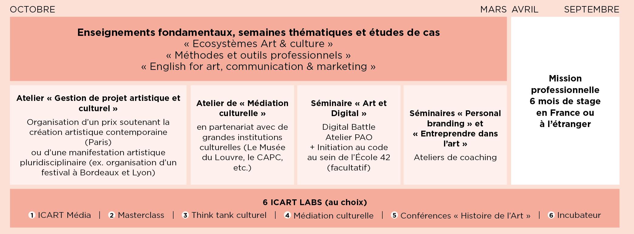 Programme - Master médiation culturelle ICART Bordeaux
